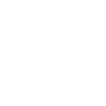 VW Professional Class